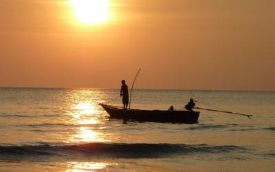 Réglementation pêche sportive pour le thon